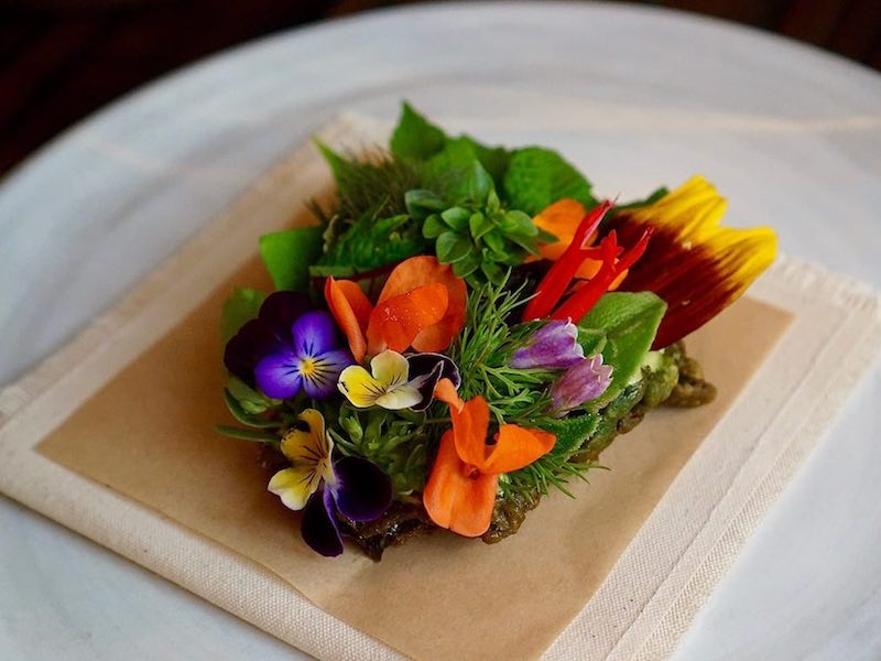 The-WIllows-Inn-Herb-tostada-credit-Amber-Gibson800x600